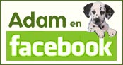 ADAM en Facebook